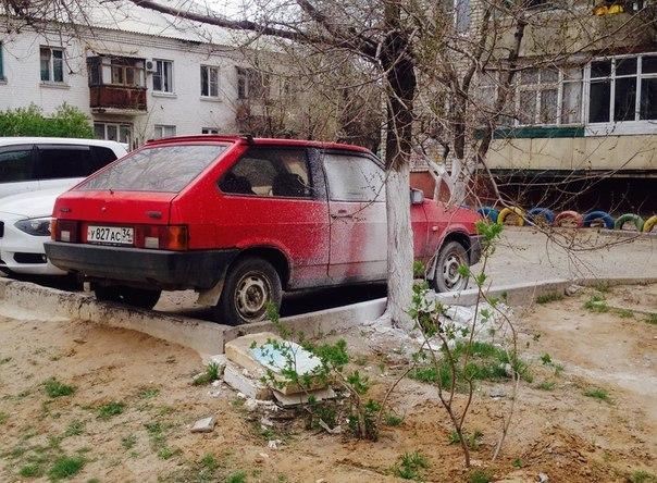 avtoprikoly-10