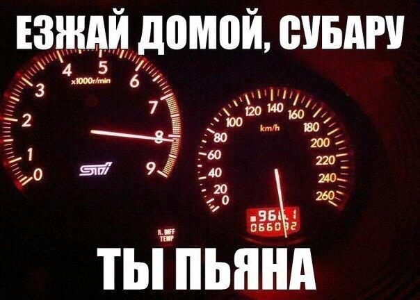 avtoprikoly-15
