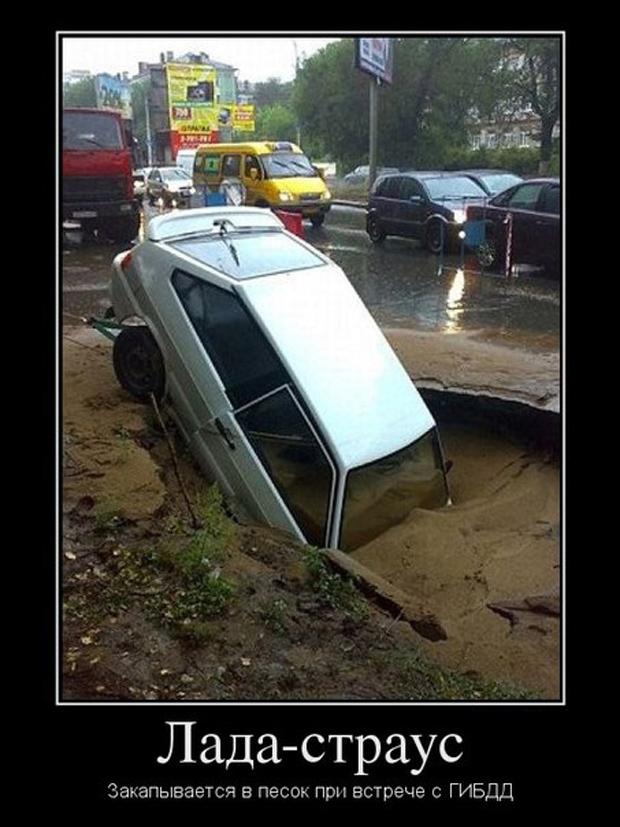 avtodemotivatory-19