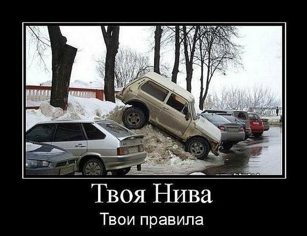 avtodemotivatory-3